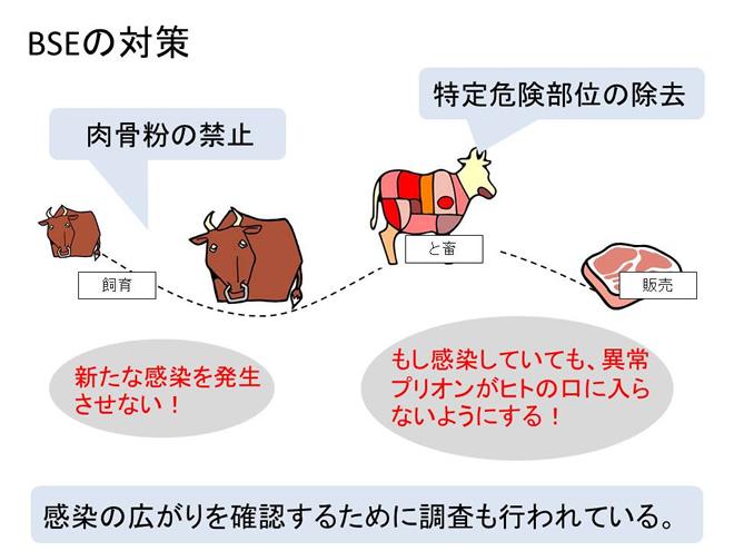 BSEの対策