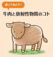 パンフレット 知ってみよう!牛肉と放射性物質のコト
